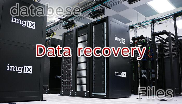 閲覧/アクセス不可コンテンツをサーバーから復旧する方法